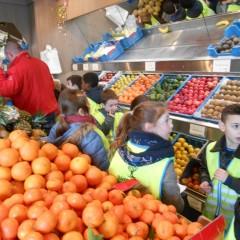 Bezoek aan de groente – en fruitwinkel 'het Appeltje'.