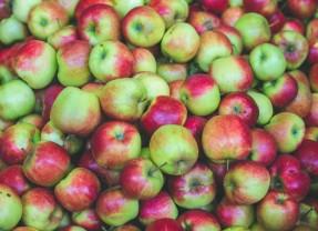 Appels zijn gezond !