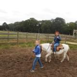 Schoolreis eerste leerjaar: naar de ponyhoeve !