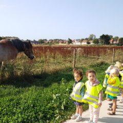 Wij wandelden naar de Stadsboerderij